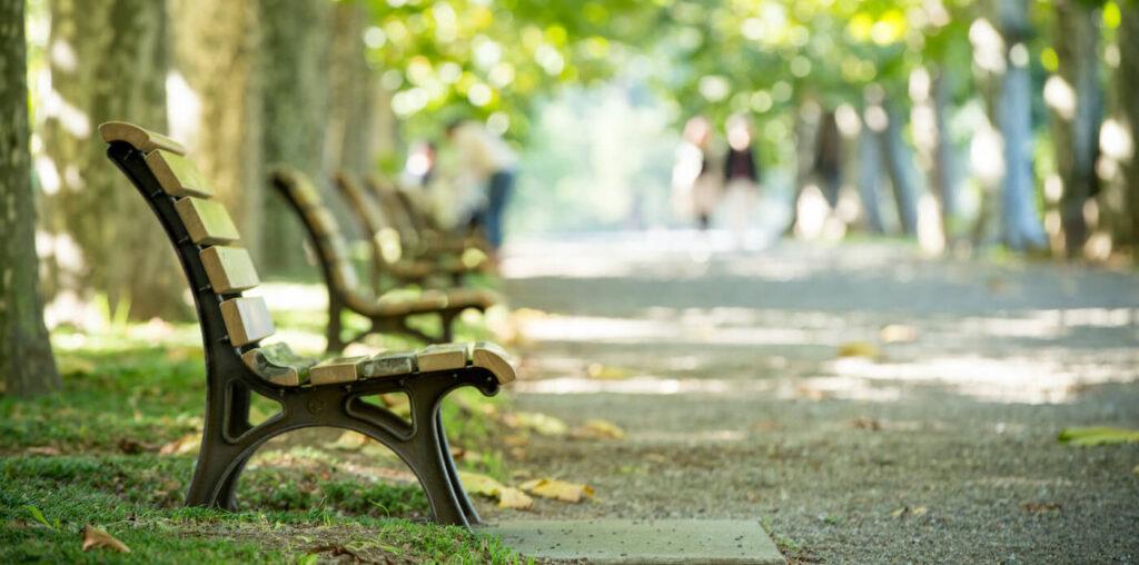 受験生にオススメの勉強場所_公園